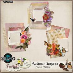 #Autumn Surprise Photo Mattes Pack by #Booland Designs and #LindaCumberland Designs #theStudio #digiscrap
