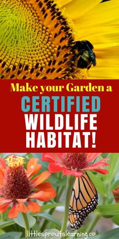 CERTIFIED WILDLIFE HABITAT! We need pollinators to survive. There are over 100 crops that could not produce without being pollinated by wildlife. Our pollinators are rapidly declining and we have to stand up and take notice. Without food, we will not survive. Make your garden a certified wildlife habitat today!