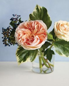 peaches and cream roses combined with white-edged ivy and viburnum berries