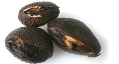 New entry in our Glossary : Keluak Nut (Pangium edule)   Read about this at  : http://culinaryglossary.info/k/kluwak-nut/ Buah keluak is a black nut from Indonesia about the size of a misshapen golf ball. The surface is ridged with a smooth nut 'mouth' across the flattest part. A slit is made in this mouth through which one scrapes out the contents which have been variously described as 'opium' and soft tar'. The taste is indescribable and has