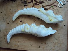 Ermelyn's Horns - If you like creating your own creatures for your haunt you'll eventually have the need to create some horns for them.  You can probably buy some actual antlers, but if you're planning on incorporating them into a mask or don't want an overly heavy static prop, you may want to follow Ermelyn Hollerborn's tutorial for making horns in 10 easy steps.