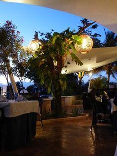 Dreams Puerto Aventuras Resort & Spa All Inclusive: So pretty.