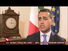 Luigi Di Maio (M5S) intervista al TG2 - 29/11/2016