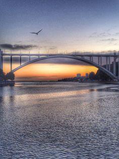 Ponte da Arrábida by Helena Sampaio