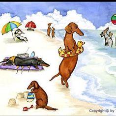 Weenie dogs