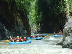 costa rica vacations - Google Search