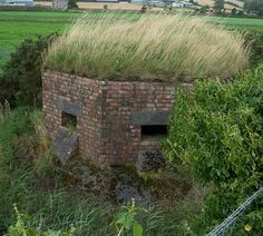 Comber, Co Down - This is a pillbox that can be found on the shore of Strangford Lough between Comber and Newtownards.