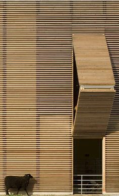 ideas that changed architecture - cladding wood paneling, a traditional material in a modern facade.a modern barn. Detail Architecture, Wooden Architecture, Architecture Photo, Contemporary Architecture, Amazing Architecture, Education Architecture, Installation Architecture, Building Architecture, Light In Architecture