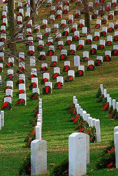 Christamas at Arlington Cemetary - photo by George Reader I Love America, God Bless America, Julius Caesar, Arlington Cemetary, Old Cemeteries, Graveyards, Cemetery Art, National Cemetery, Home Of The Brave