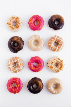 Fall Donut Party! - Broma Bakery