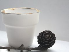 Small English fine bone china planter with real by madebymanos, on Etsy