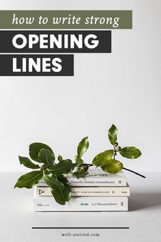 Are you struggling to write opening likes that hook and intrigue? I have just the guide you need over on the Well-Storied blog!