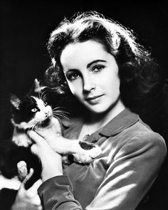 Elizabeth Taylor Posing With Cat Early Portrait 8x10 Photo(20x25cm)