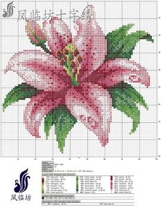 Cross stitch graphics - star gazer lily