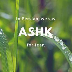 Ashk-Tear | © Culture Trip/Pontia Fallahi