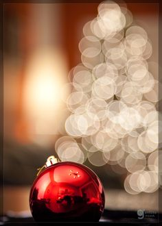 'Tis The Season by adrian c on 500px