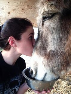 Rikki's Refuge Horses and Donkeys #54 -  www.rikkisrefuge.org - BeeBee getting love and noms from Brittney! This is so sweet!