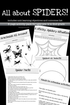 A free 8-page resource pack to teach spiders and arachnids to students in early childhood education. Great for a bug and insect learning theme or even a Halloween thematic learning unit.