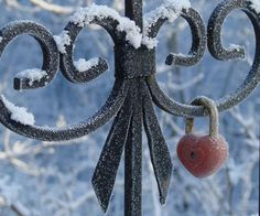 heart lock on a snow sprinkled gate.This says: etimr My Funny Valentine, I Love Heart, Key To My Heart, Art Deco Coffee Table, Snow Fence, Frozen Heart, Four O Clock, I Love Winter, Winter Blue