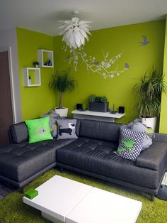 Habitat sofa with lime wall and decal Living Room Decor Cozy, Living Room Green, Green Rooms, India Home Decor, Green Home Decor, Home Room Design, Living Room Designs, Indian Room, Living Room Color Schemes