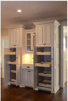 kitchen pantry cabinets Built In Pantry Design Ideas, Pictures, Remodel, and Decor - page 11 Kitchen Pantry Design, Kitchen Pantry Cabinets, Kitchen Redo, New Kitchen, Awesome Kitchen, 1950s Kitchen, Kitchen Countertops, Life Kitchen, Kitchen Designs
