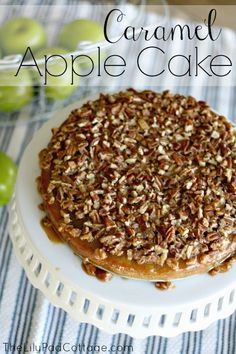 Caramel Apple Cake - easy to make spice cake with shredded apples topped with caramel and pecans - so good!