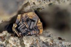 "Fluorophlogopite KMg3(Si3Al)O10F2 Locality:Ravin des Chèvres (Rivaux Grands), Mont-Dore, Puy-de-Dôme, Auvergne-Rhône-Alpes, France Field of View: 3.6 mm Fluorophlogopite (""biotite"") with a beautiful..."