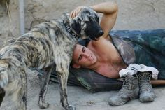 Military dogs Suffer PTSD — Soldiers returning from battle are not alone in their difficult readjustment to civilian life: their brave canine counterparts are also struggling with . . . http://www.globalpost.com/dispatch/news/regions/americas/united-states/111202/military-dogs-suffer-ptsd#