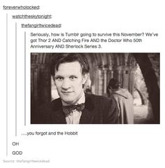 The internet is going to implode from awesomeness come November. (Except, of course, the Hobbit: The Desolation of Smaug comes out in December, not November. Otherwise, correct.)