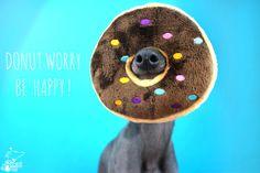 Charcik Włoski http://www.tesoridicarli.pl/ Donut Worry, Be Happy!