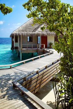 Best Places To Go For Your #Honeymoon at #Constance_Halaveli_Maldives at #Ari_Atoll #Maldives http://en.directrooms.com/hotels/info/1-14-47-88130/