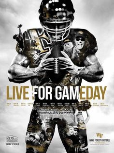 2014 Wake Forest Football Poster This picture caught my attention because the designer did a very good job on it. They subtly added in images of the school, the stadium, the students, coaches and fans to add an effect of intensity. All of these images do not mess up the design, they keep the same overall shape, but just give it more definition and meaning. This is a very well designed piece.