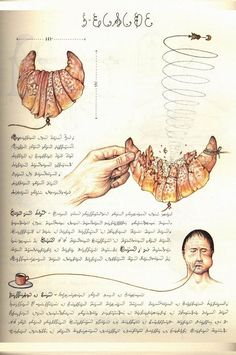 Codex Seraphinianus: The Weirdest Encyclopedia Ever | Earthly Mission (to Extract the Juice of the Internet)