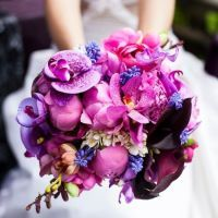 Vivid Violet, Flirty Fuchsia – Vibrant Pink and Purple Wedding Design with Black and White Stripes