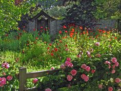 Mistigris rêve d'un jardin anglais, alors je me suis mise en recherche ici : avec des graines Là, un abri de jardin comme on les aime...