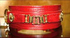 Unique Dog Collars, Dog Accessories, Dogs, Clothes, Collection, Fashion, Moda, Clothing, Pet Dogs