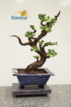 A chocolate bonzai from Savour School! #bonzai #chocolateflowers
