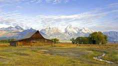 cabin themed (Fonda Bush 1920x1080)