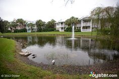Grounds at the Disney's Old Key West Resort