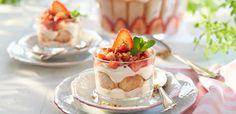 Rezept Erdbeer–Tiramisu