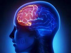 4 exerciții pentru a avea o minte limpede la bătrânețe — Doza de Sănătate