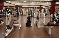 Microbes In The Weight Room | Popular Science