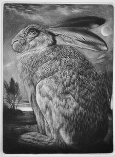 Image result for Hare in a Moonlit Landscape by Clive Riggs