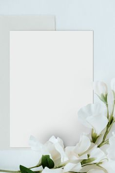 Download free png of White sweet pea flower on a card mockup  2439305