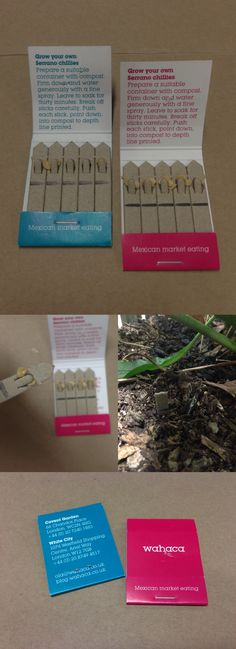 Business card, which are chilli seeds in a matches packaging, ready to be planted — Wahaca, Mexican restaurant (London)