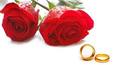 Rose Color Meanings (Love, Desire, Mystery, Sorrow, Friendship)