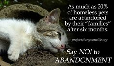 Say NO! to ABANDONMENT.