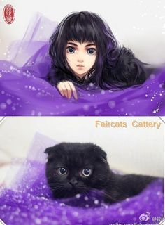 Cool art. Cats Reimagined As Beautiful Anime Ladies