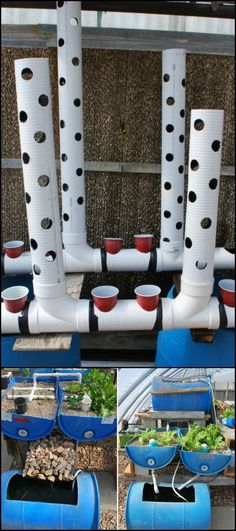 Learn how to easily build a gravity-based aquaponic system! http://theownerbuildernetwork.co/jeyf Want to grow your own vegetables or even some fish for food? You don't need to have an enormous space to make it happen with this PVC aquaponic system! Got at least 5' x 3' available space? Perfect! It is a very efficient gardening system that makes producing your own food possible and easy. :)