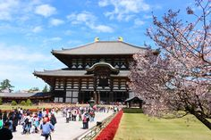 Todai-ji Temple | Nara | Japan Hoppers - Japan Travel Guide